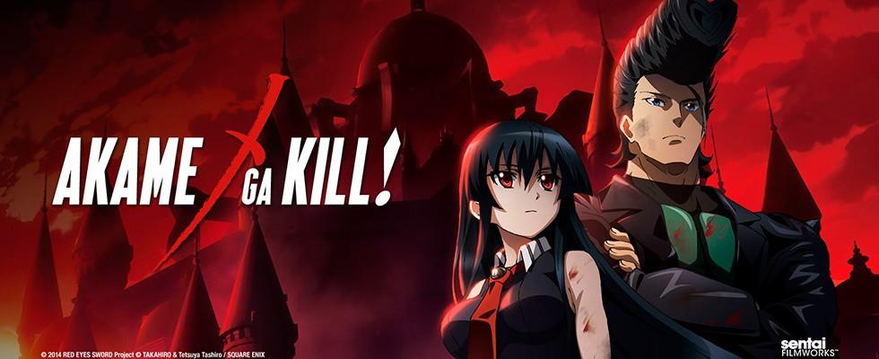 Akame ga Kill! / Убийца Акамэ! / მკვლელი აკამე!